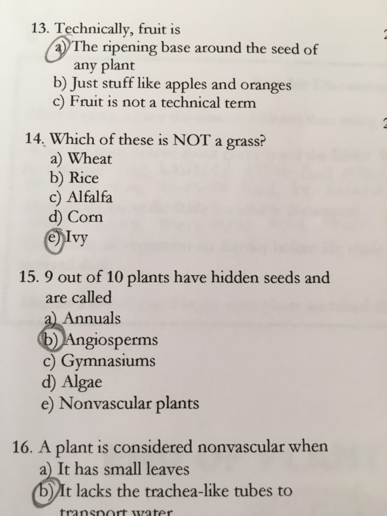 Sample quiz page from Biology 101 series -