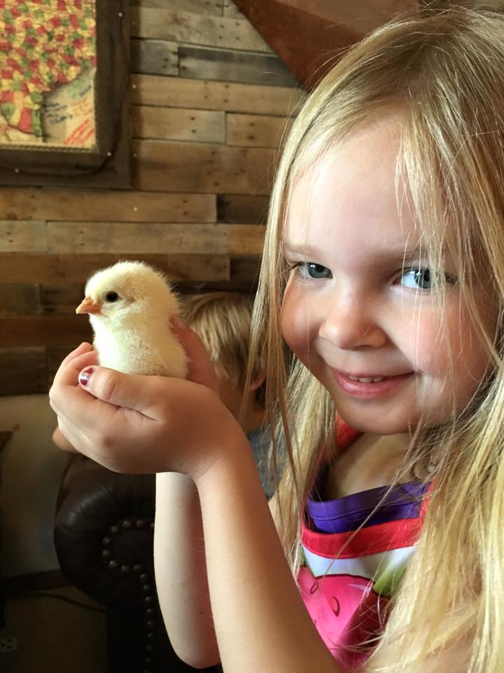 catie and chick