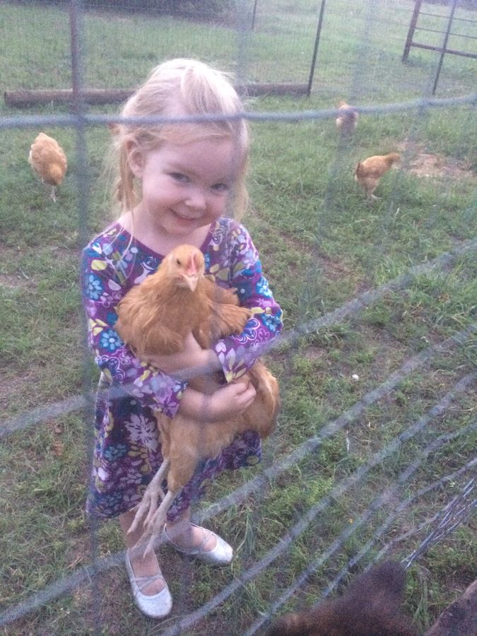 cute little girl with chicken