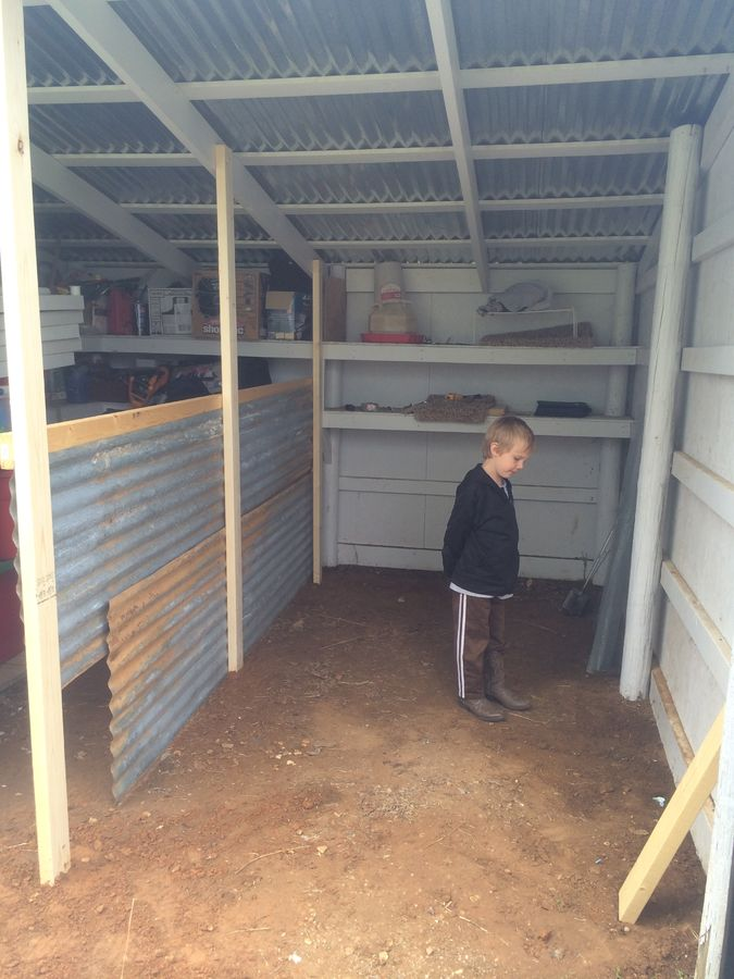 Helping to build a chicken coop