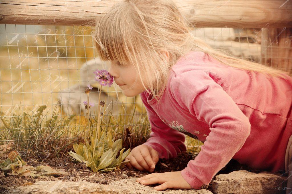 Sheltering children like tender plants