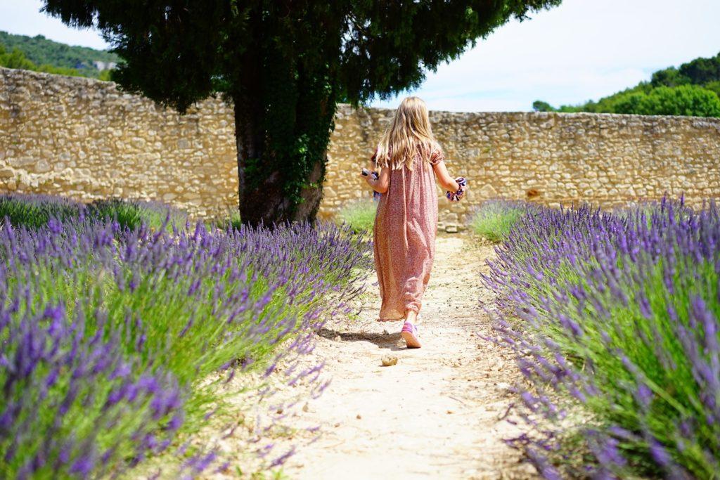 Children should be sheltered and nurtured like plants